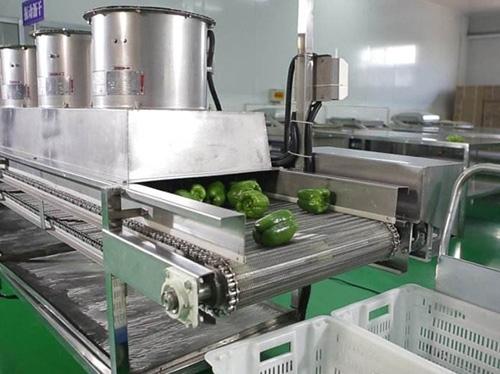 蔬菜自动烘干消毒