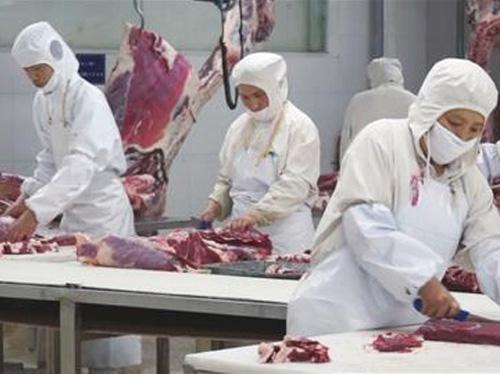 牛肉分割加工