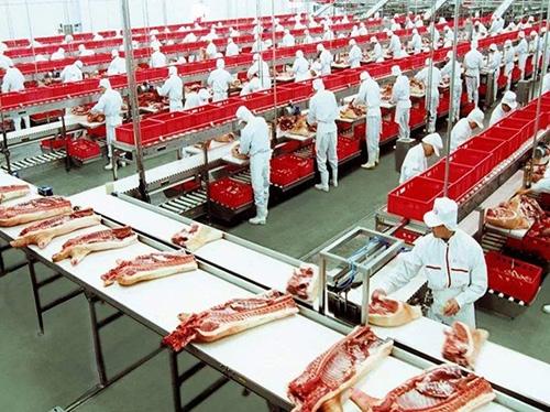 猪肉分割加工